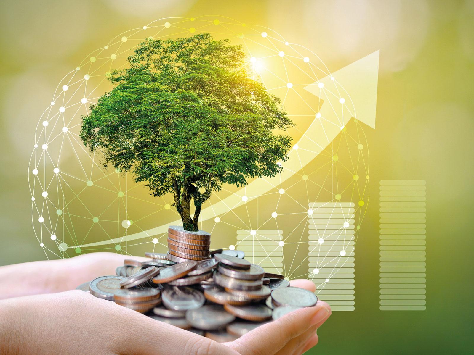 Comportamenti green e ripresa